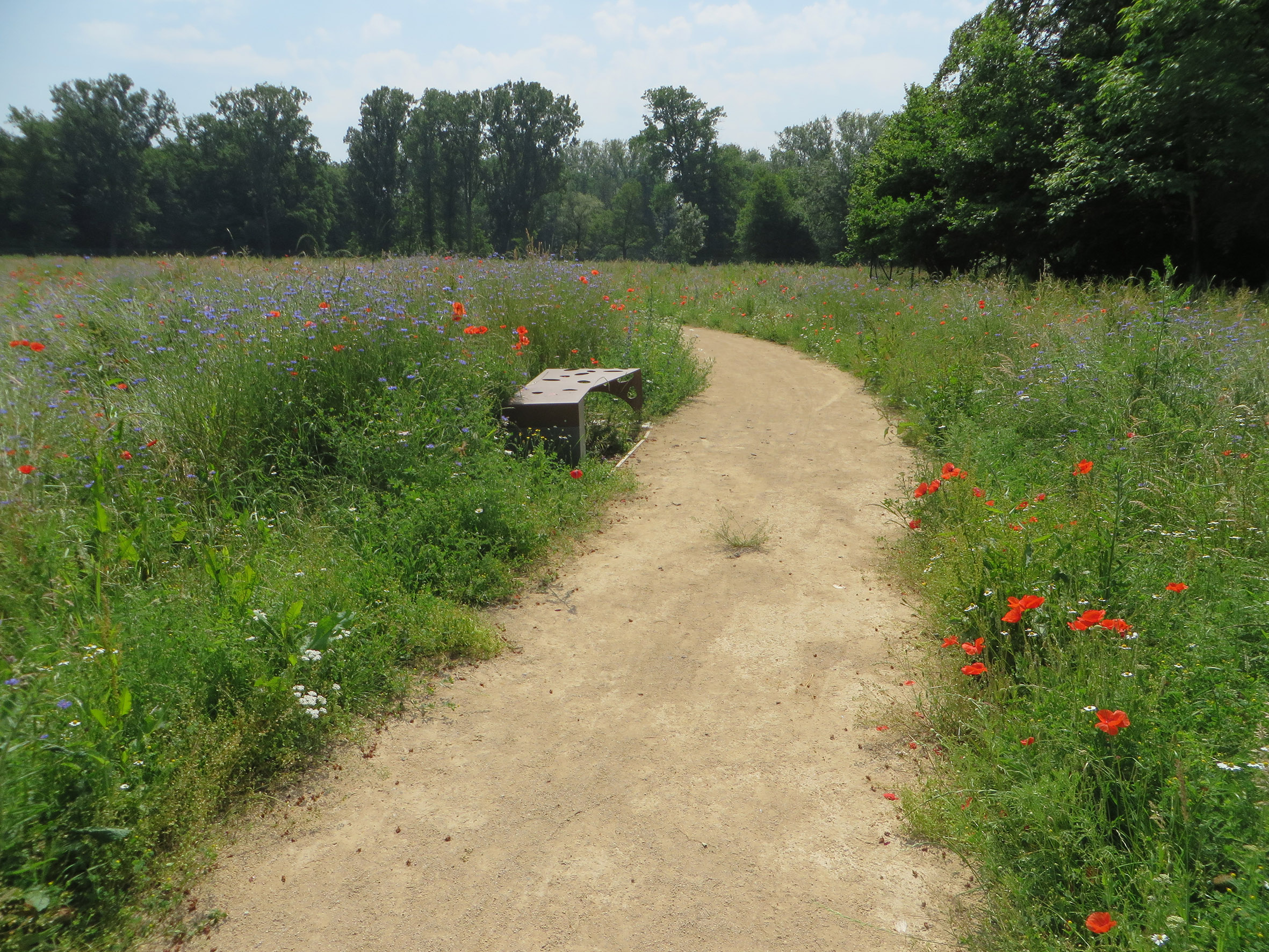 http://iups.eu/wp-content/uploads/2018/06/Ernolsheim-Bruche-parc.jpg